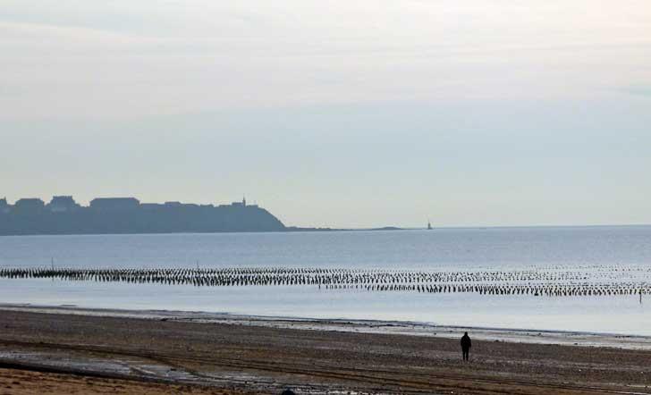 La plage et parcs moules sur bouchots à Granville