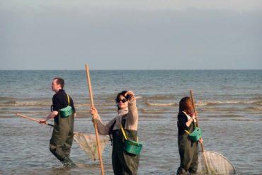 Activité Pêche à la crevette