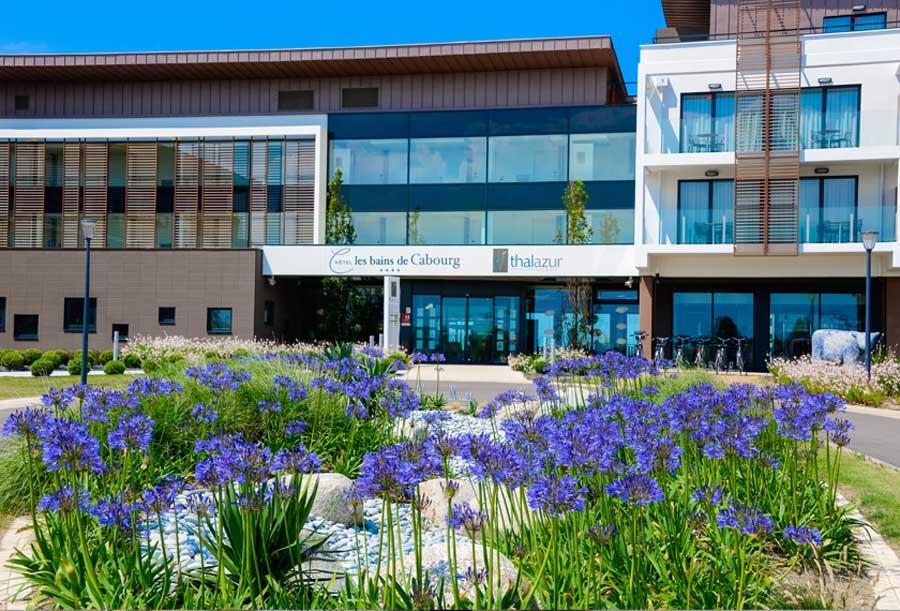 Agapanthes de l'Hôtel les bains de Cabourg