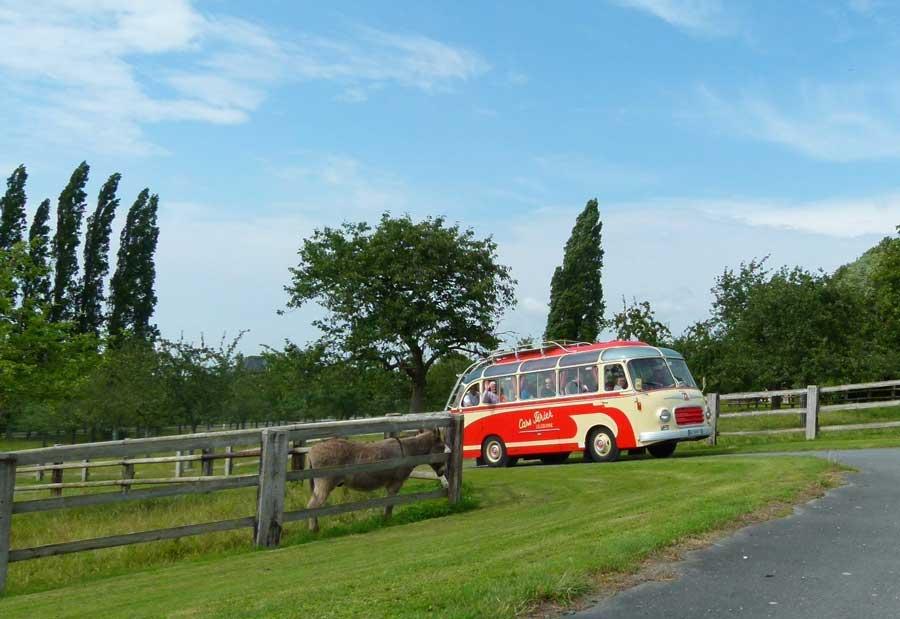 Bus vintage pour votre coDir en Normandie