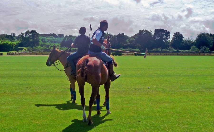 Activité Découverte du polo