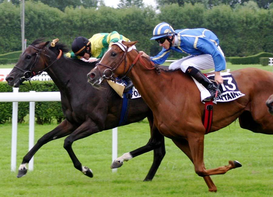 Découvrez le monde du cheval ici Les courses pour vos séminiares à Deauville