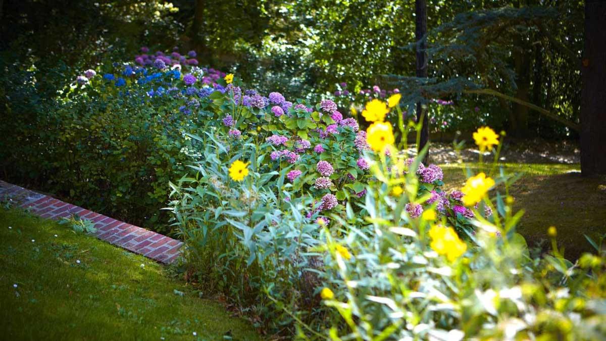 Jardin et fleurs de l'hôtel Le Donjon à Etretat