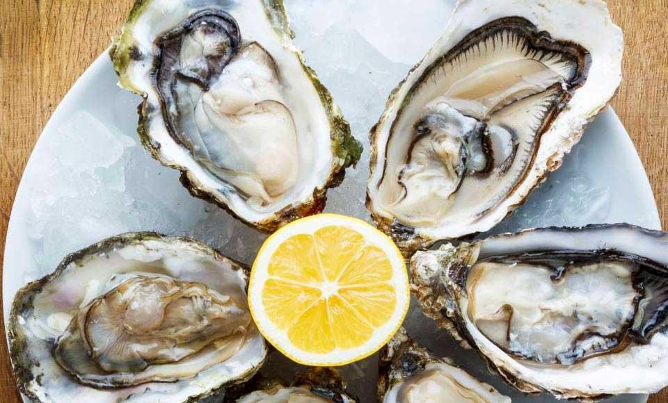 Dégustation de fruits de mer à Honfleur