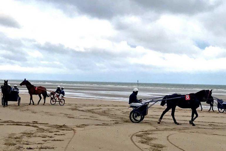 Baptême de sulky sur la plage de Deauville